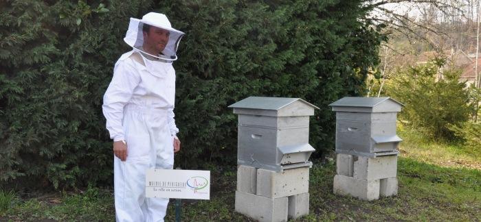 Les ruches de Périgueux